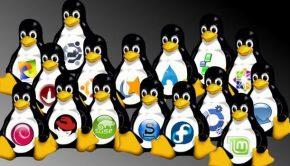 10 distribuciones Linux más populares de finales del 2016