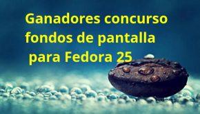 Ganadores concurso fondos de pantalla para Fedora 25