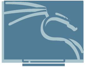 Personalizando tu Kali Linux: KDE Plasma Ghost
